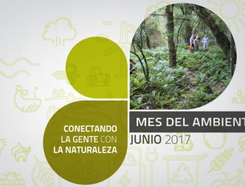 Junio: Mes del Medio Ambiente